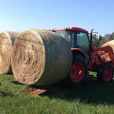 Hay Handling